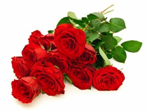 799318-red-roses